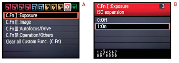 Canon ISO Expansion