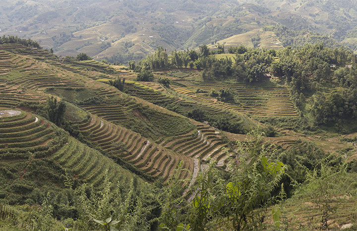 A photographic account of Vietnam: Sapa